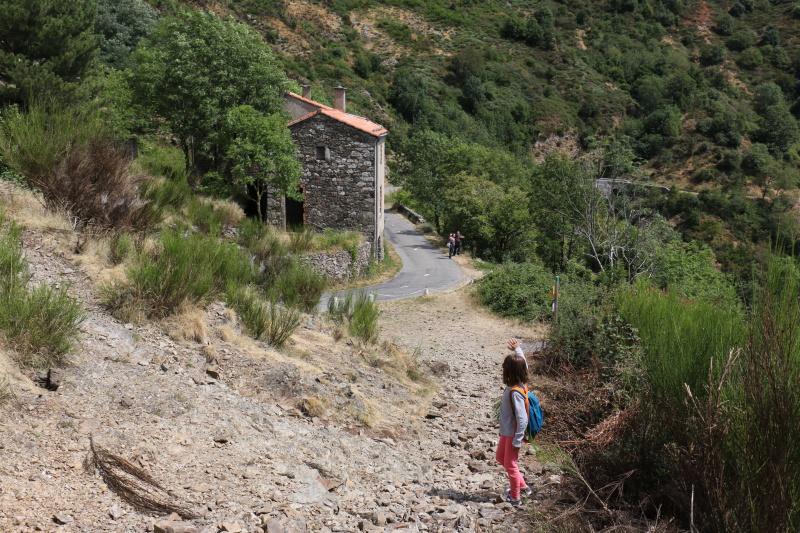 Les Cevennes autour du Mt Aigoual 511200IMG5218