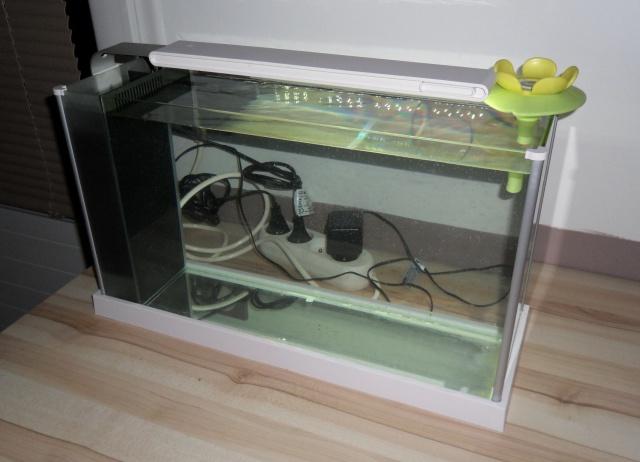 Nano aquarium Fluval Spec V 19L [mise en eau] 529088aqua2