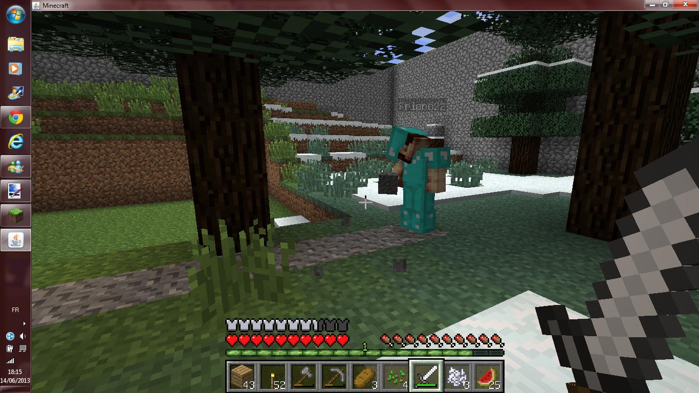Minecraft Serveur PCM Village - Page 4 533298PCMVILAGESERVEUR6
