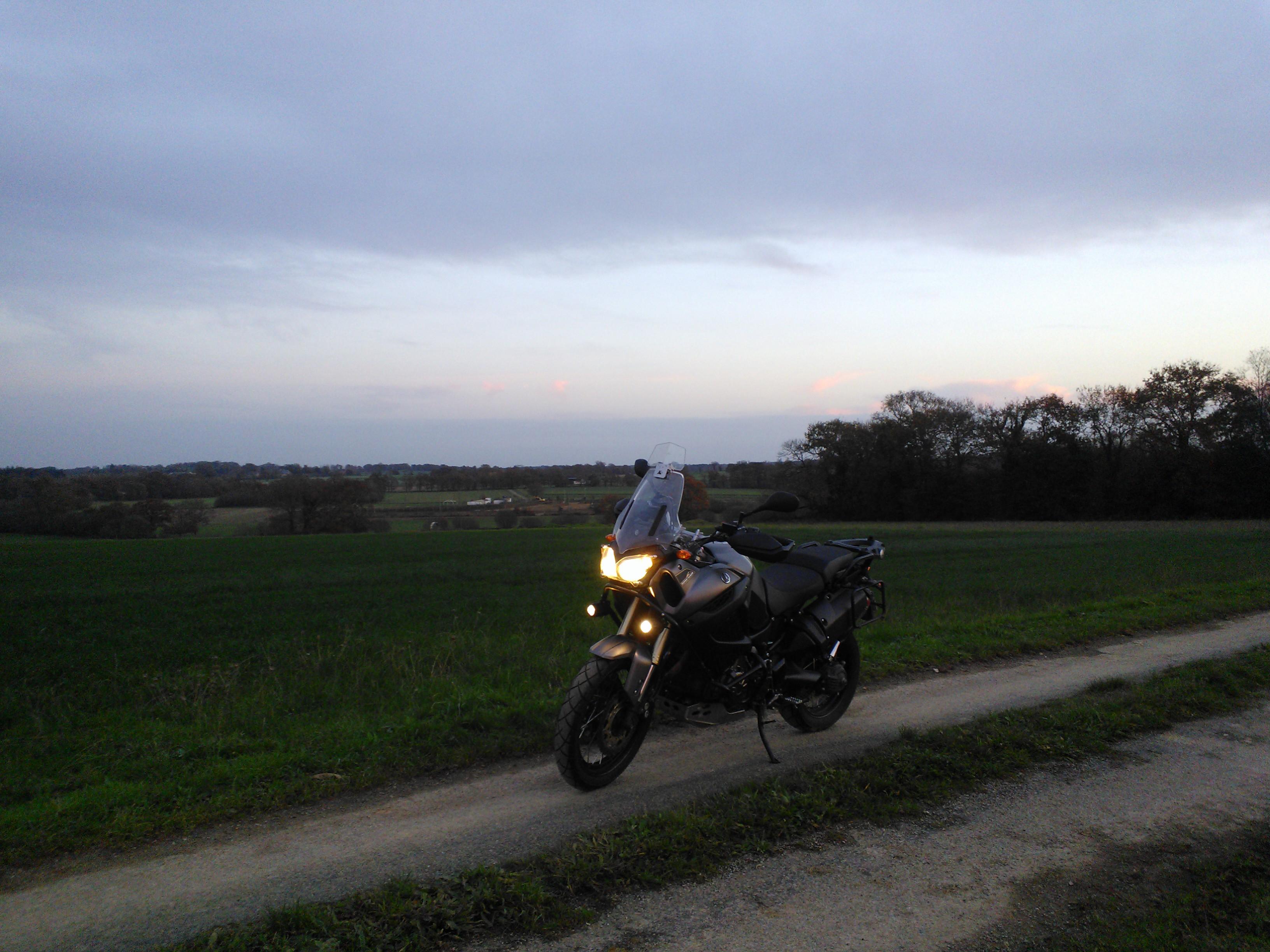 Balade dans les champs en Bretagne 537218Pipriac201411294