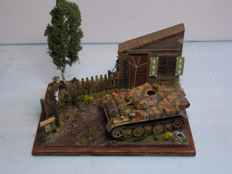 Un Lynx quelque part sur le front est 1944 - char Luchs ASUKA deco BLACKDOG 1/35 - Page 3 540494DSCN5123
