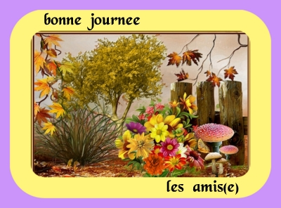 Bon Mercredi 5450868cc80b4e