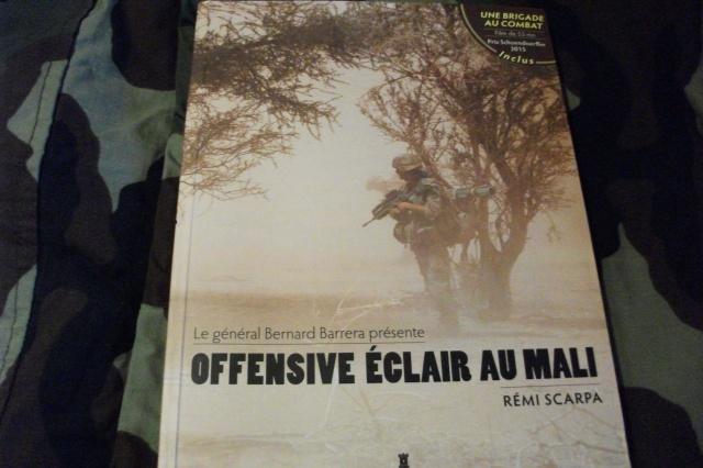 Offensive éclair au mali  545332DSCF3884