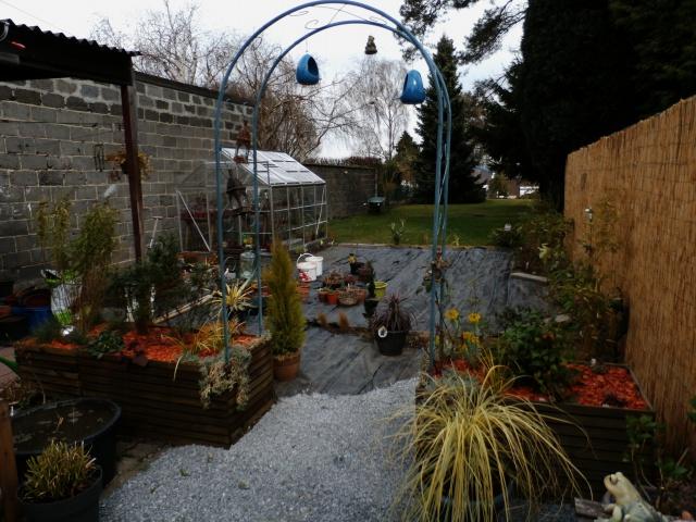 Phyllo - nouveau jardin 549936P3160013