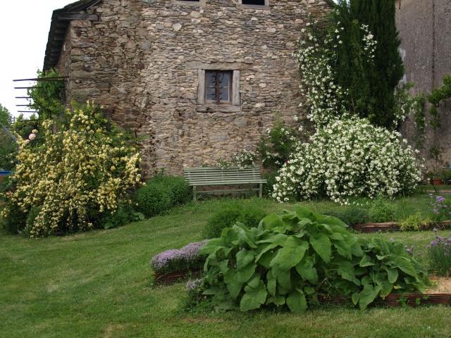 le joli mois de mai des fous jardiniers - Page 7 550663P5156730