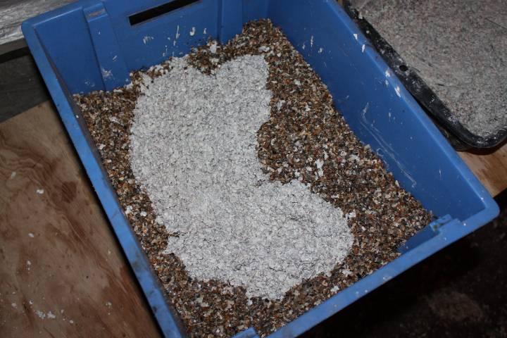 réalisation de pierres artificielle pour récifale 555306PXR_IMG_0010