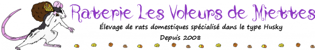 Les Chroniques Royales N°29 557999customLogo