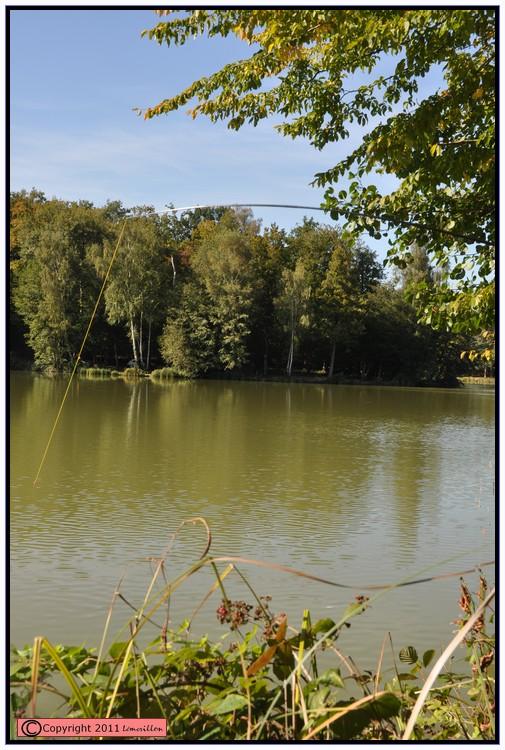 Vendredi jour du poisson 565039action12
