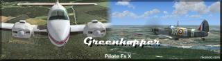 Greenhopper studio's 569621Banniererikoo2