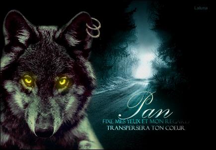 Pan - Parias - Eclaireur 572168TAPan3