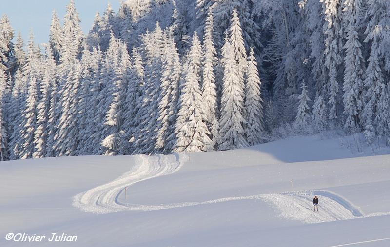 Beau début d'hiver dans les Hautes Combes! 572719DSC2141b