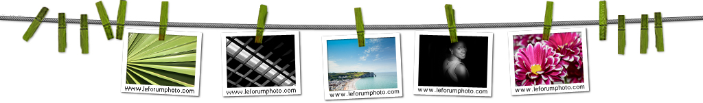 Le Forum Photo