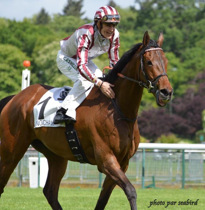 Prix Ganay 2014 (Gr. I, Longchamp) 27-04 : Cirrus des Aigles (+photos) 590803244001