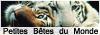 Les Cavalier(e)s Cancoillotte Addicts 593563PBDM5
