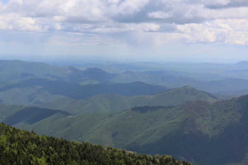 Les Cevennes autour du Mt Aigoual 594060IMG3149