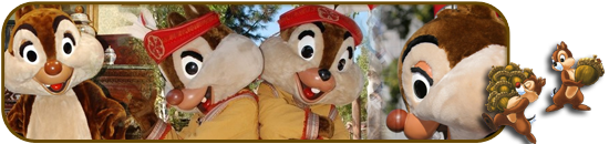 Duffy l'ourson arrive a Disneyland Paris  599108signasylvie