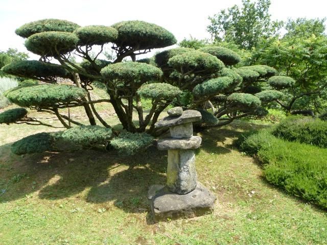 (26) Jardin Zen d'Erik Borja - Beaumont Monteux 605273P1020142