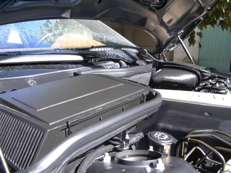 [BMW 530 d E39] Renaissance d'un Cosmos Schwarz Metallic 608297P1000475