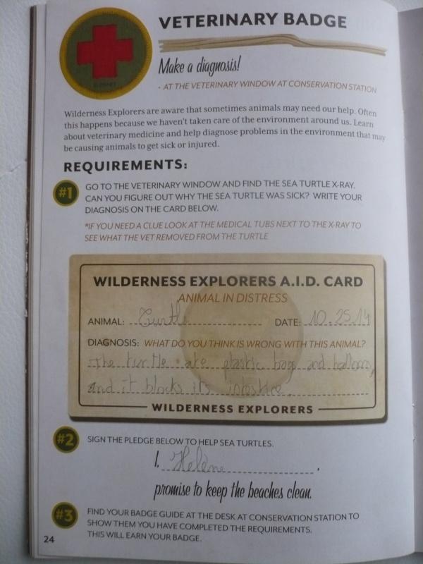 [18-31 octobre 2014] Voyage de noces à Walt Disney World et à Universal - Page 12 618934P1100507