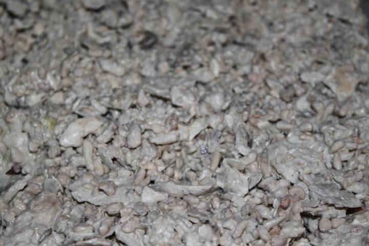 réalisation de pierres artificielle pour récifale 625030PXR_IMG_0034