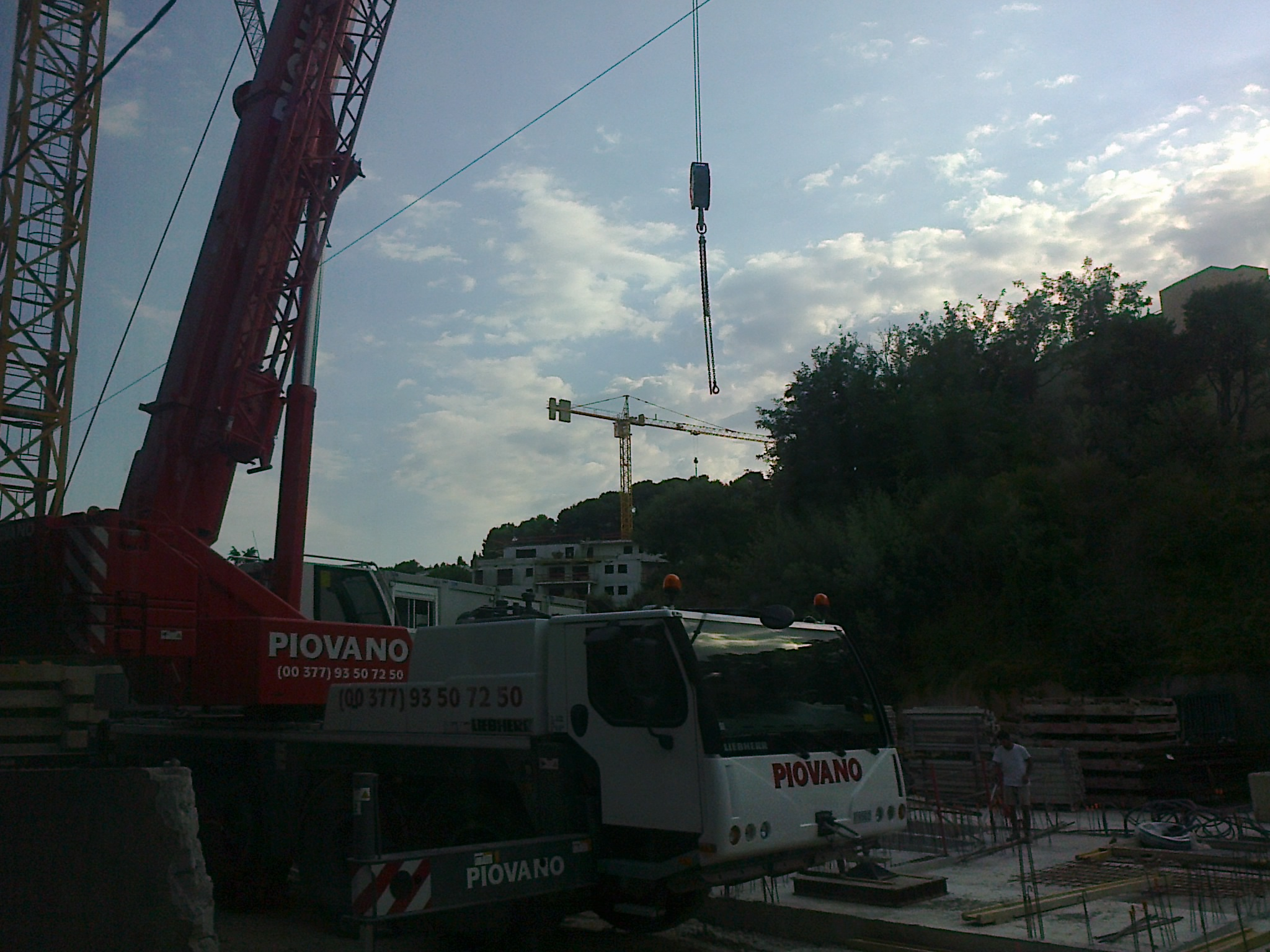 Les Grues de PIOVANO (France & Italie) 625627Photo4706