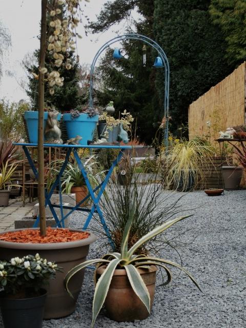 Phyllo - nouveau jardin 628714P3160011