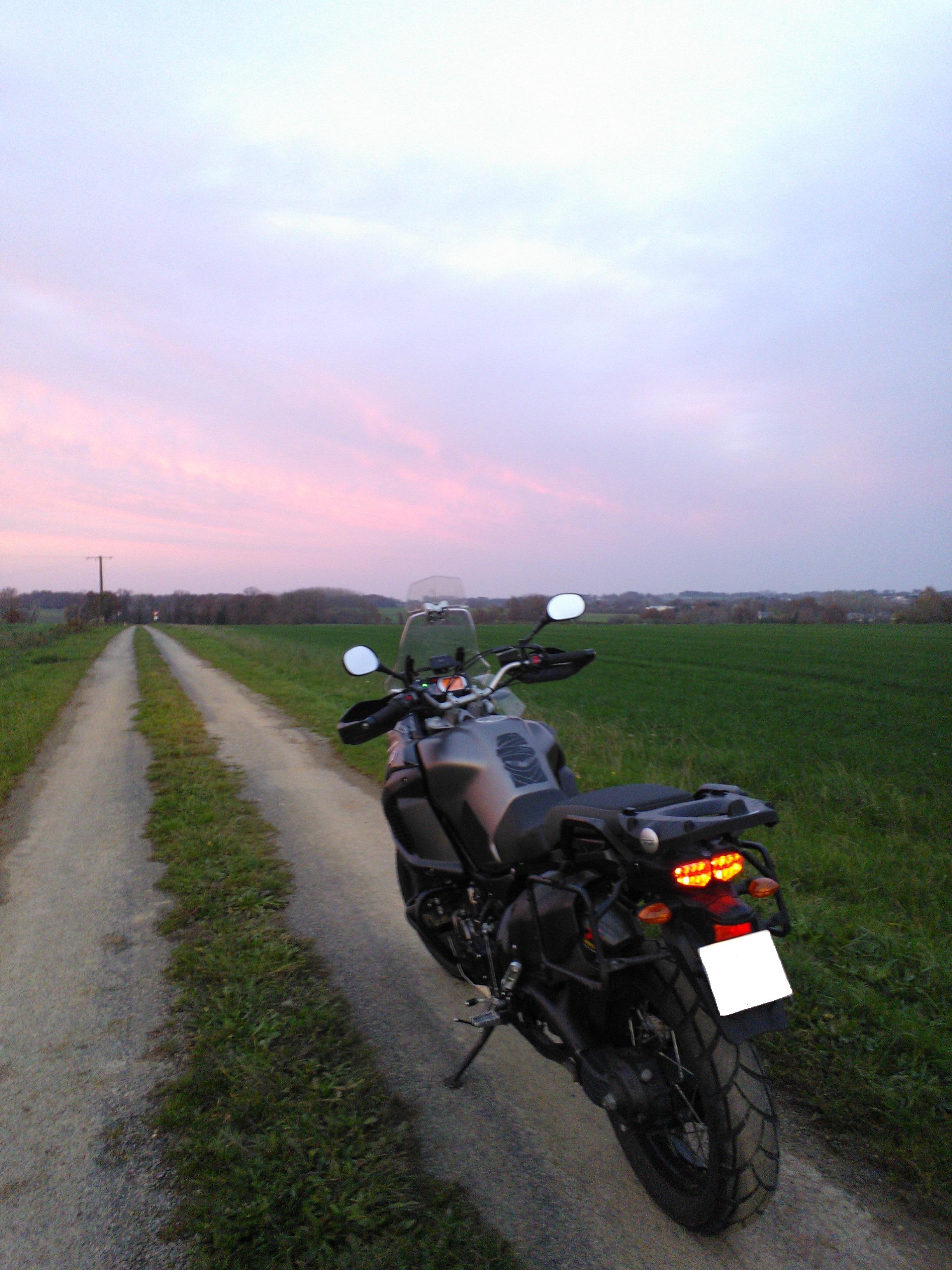 Balade dans les champs en Bretagne 636265Pipriac201411293