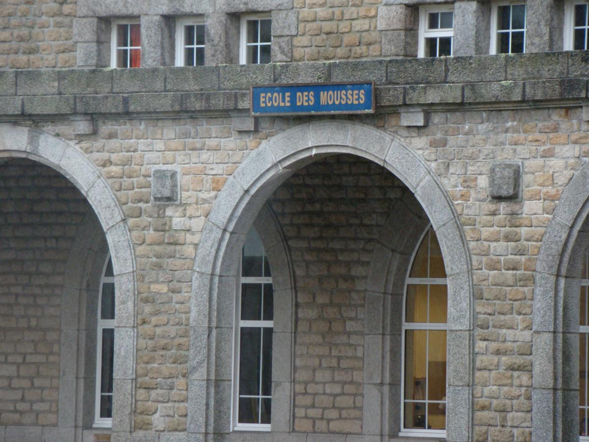 [ École des Mousses ] École des Mousses - Page 3 638246DSC04484001
