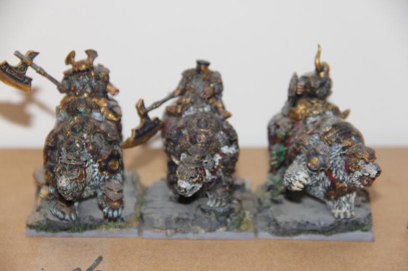 [Vente] Armées complètes Nains/ Bretonnie 641465IMG3445