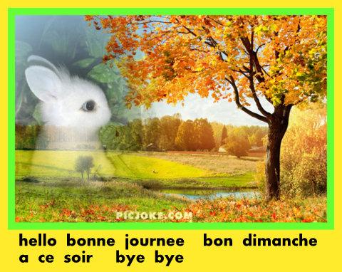 Bon Dimanche 64165210fr08ed09b22019744678a153080f151271