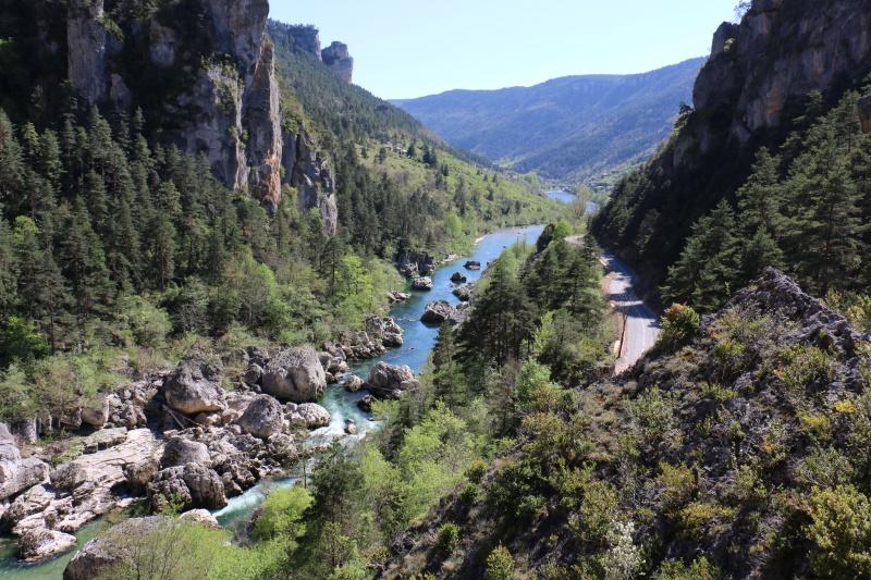 Les Cevennes autour du Mt Aigoual 643923IMG2667