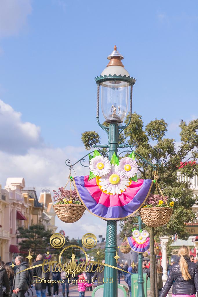 Festival du Printemps du 1er mars au 31 mai 2015 - Disneyland Park  - Page 8 64469727fevrier1558