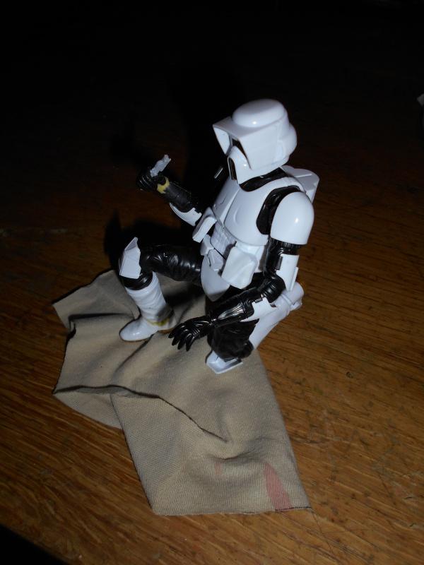 STAR WARS : Endor diorama - Page 2 648264DSCN0120