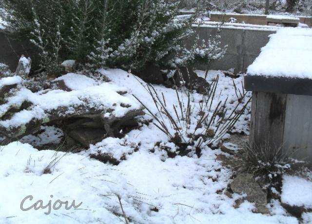 En Auvergne 650555neige3