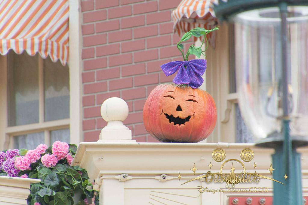 Halloween 2014 - Du 1er Octobre au 2 Novembre - Page 6 654646DSC0568