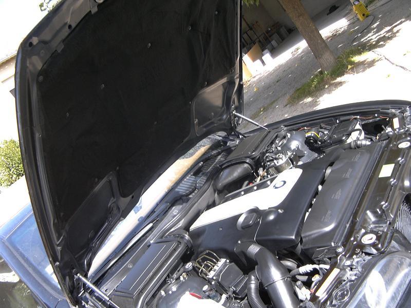 [BMW 530 d E39] Renaissance d'un Cosmos Schwarz Metallic 656144P1000482