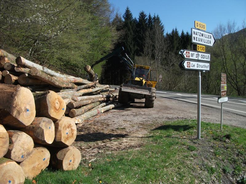 Du débardage dans les Vosges, à Hauteur de Schirmeck 656289007