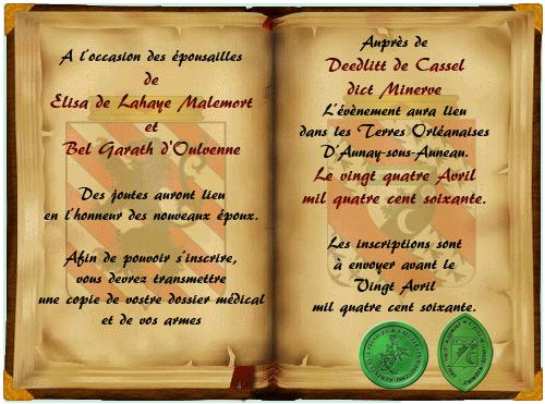 De la Hérauderie Royale - Page 3 664868joutes2copie
