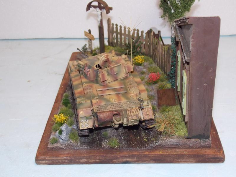 Un Lynx quelque part sur le front est 1944 - char Luchs ASUKA deco BLACKDOG 1/35 - Page 3 672443DSCN5127