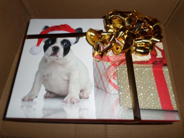 Père Noël Surprise 2014 - Page 21 681813SAM0270