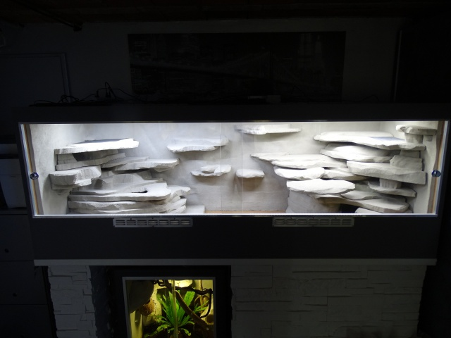 Chauffage [et UV] Varanus acanthurus - Page 3 686344DSC01782
