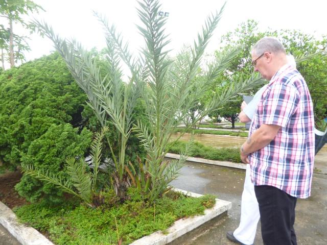 Tourisme historique à Dien Bien Phu 694079P1030729