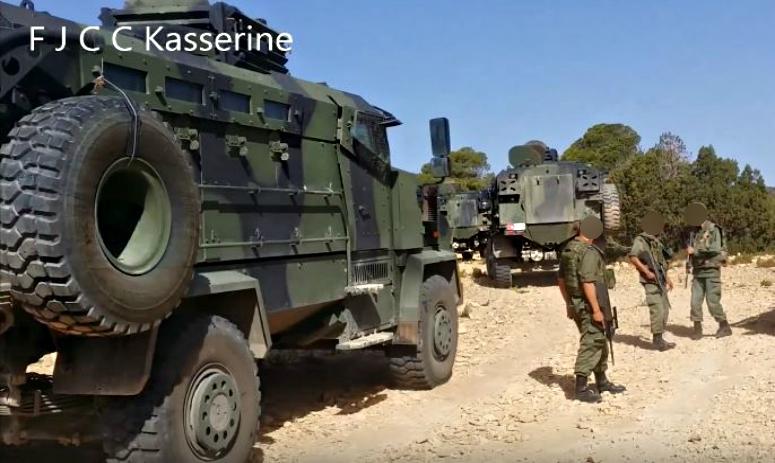 Armée Tunisienne / Tunisian Armed Forces / القوات المسلحة التونسية - Page 3 69603019dd