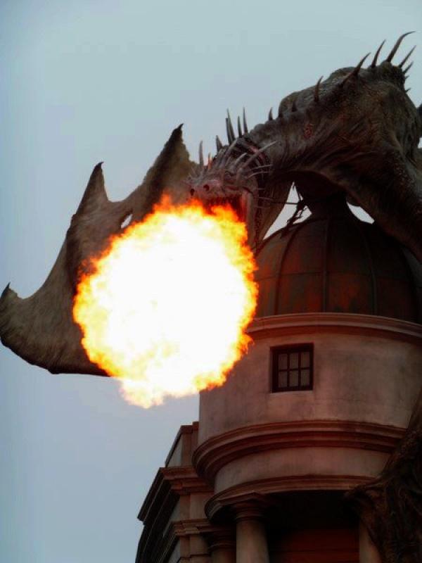 [18-31 octobre 2014] Voyage de noces à Walt Disney World et à Universal - Page 22 706931dragonttefeu2