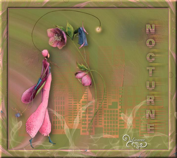 10-Cours Psp-Nocturne 709954cours10