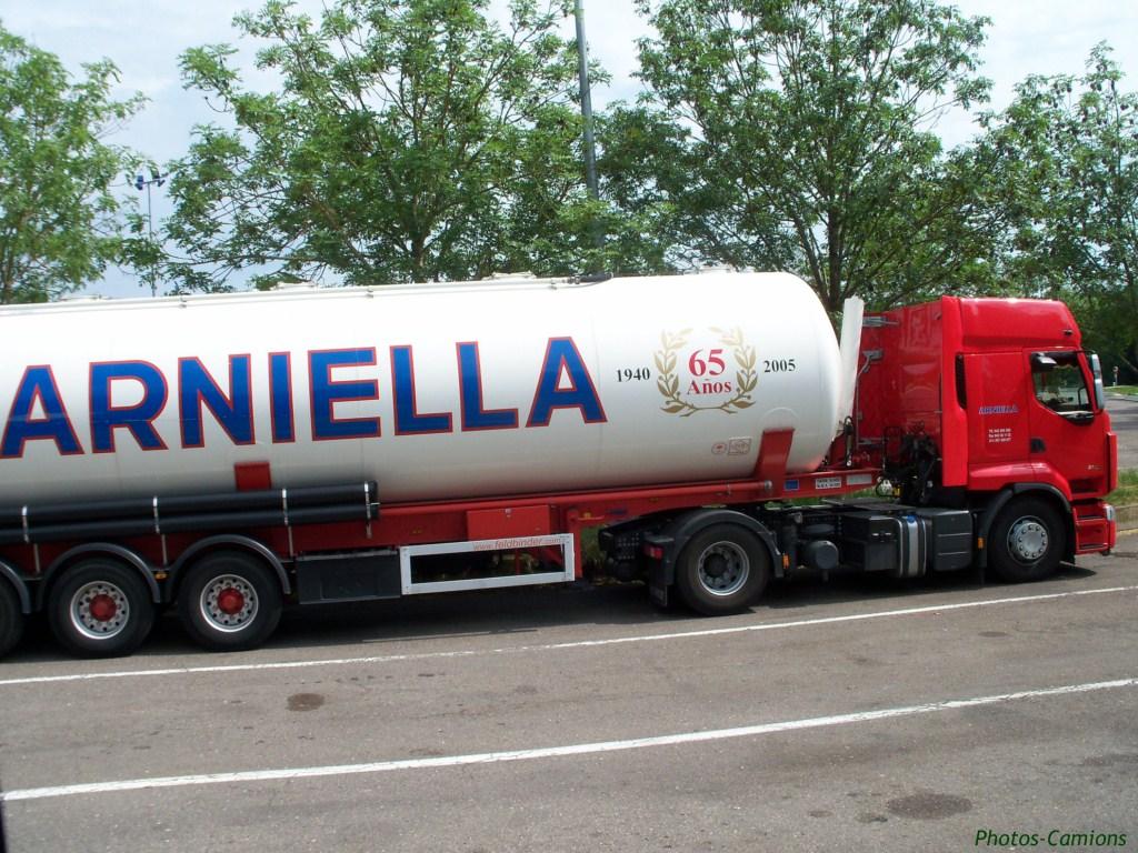 Arniella 716430photoscamions11V11107
