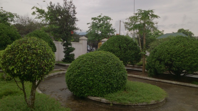 Tourisme historique à Dien Bien Phu 720381DSC9880