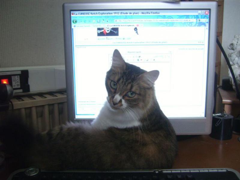 Suite à question sur nos animaux de (bonne) compagnie - Page 5 722195IMGP1251