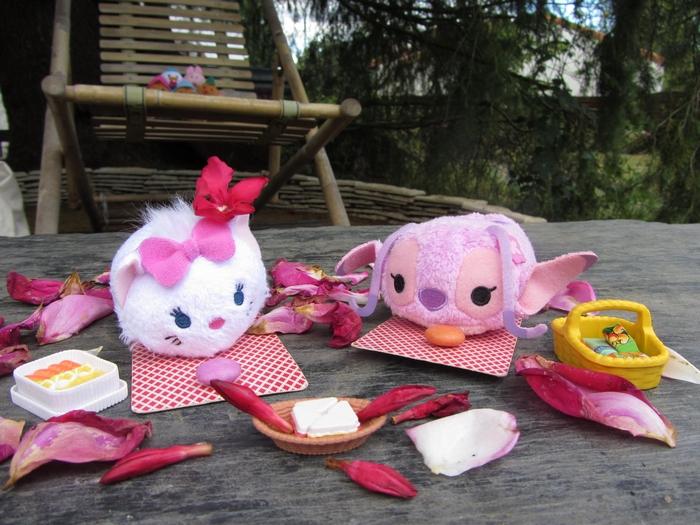 Concours : mettez en scène votre ou vos Tsum-Tsum ! ^^ - Page 11 722631IMG5924