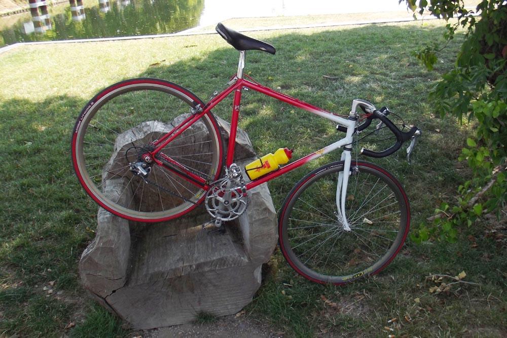 Cyclo-cross Serge Mannheim - Page 2 724322DSCF5409